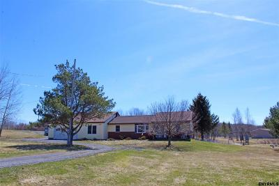 Albany County Single Family Home For Sale: 341 Flood Rd
