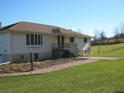 Rensselaer Single Family Home For Sale: 91 Cooley Rd