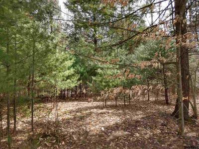 Northville Residential Lots & Land For Sale: S Main St