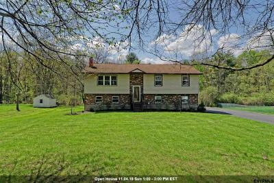 Glens Falls Single Family Home For Sale: 20 Windy Hill Rd