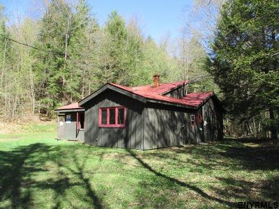 Saratoga County Single Family Home For Sale: 469 Military Rd