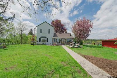 Saratoga County Single Family Home For Sale: 275 Upper Newtown Rd
