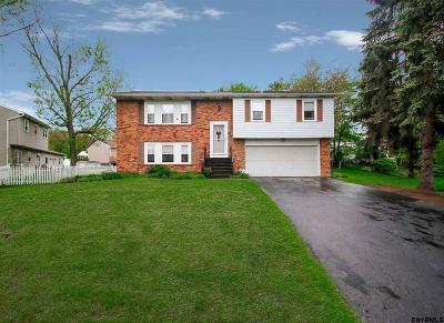 East Greenbush Single Family Home For Sale: 126 Horizon View Dr