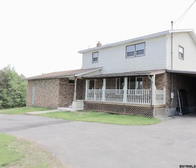 Schenectady County Single Family Home New: 213 Vernon Dr