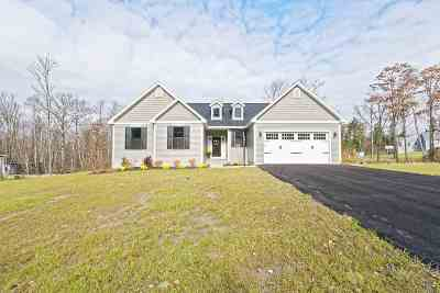 Schenectady County Single Family Home New: 223 Evergreen Pl
