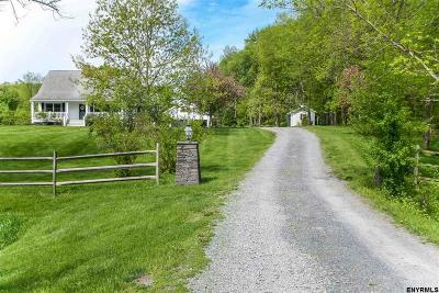 Chatham Single Family Home For Sale: 157 County Rt 17