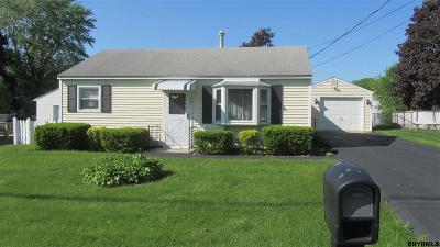 Albany County Single Family Home New: 29 Riverview Dr