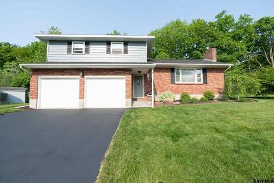 Albany County Single Family Home For Sale: 7 Stutz Av