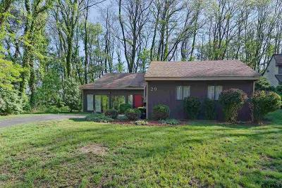 Albany Single Family Home For Sale: 29 West Meadow Dr