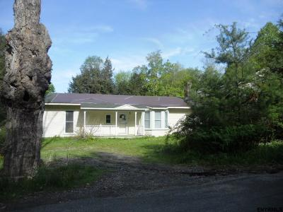 Columbia County Single Family Home For Sale: 49 Main St