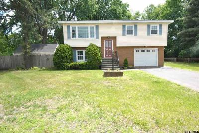 Colonie Single Family Home For Sale: 7 Marini Ct