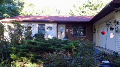 Clifton Park Single Family Home For Sale: 413 Vischer Ferry Rd
