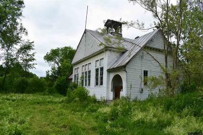 Esperance Single Family Home For Sale: 113 Briggs Rd