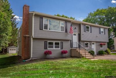 Saratoga County Single Family Home For Sale: 227 Round Lake Rd