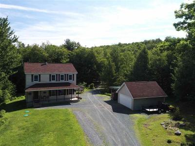 Rensselaer County Single Family Home New: 234 Jay Hakes Rd