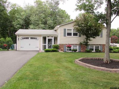 Clifton Park Single Family Home For Sale: 12 Briarfield Dr