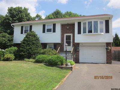 Colonie Single Family Home New: 13 Maple Dr