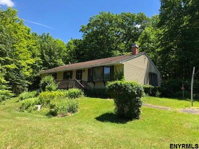 Rensselaer County Single Family Home New: 675 Kautz Hollow Rd