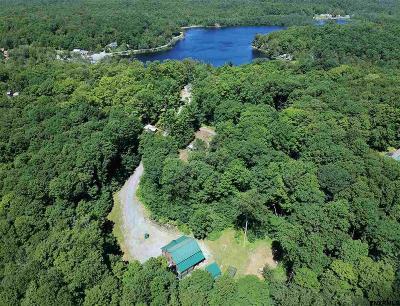 Saratoga County Single Family Home For Sale: 48 Hoffman Rd