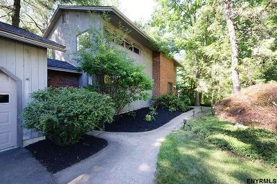 Schenectady County Single Family Home For Sale: 215 Tamar Dr