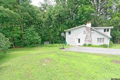 Saratoga County Single Family Home For Sale: 27 Eastside Dr
