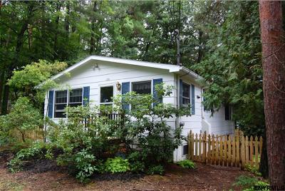 Copake Single Family Home For Sale: 136 Lake Shore Dr Ext
