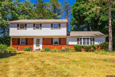 Clifton Park Single Family Home For Sale: 29 Madrid Ct