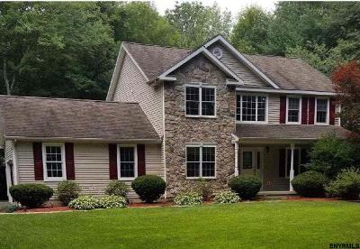 Clifton Park Single Family Home New: 92 Sitterly Rd