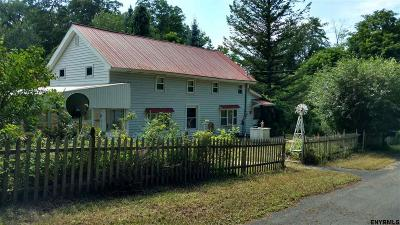 Niskayuna Single Family Home New: 458 Central Av