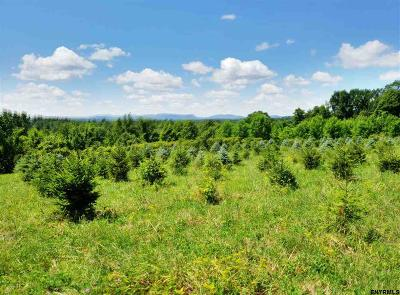 Canajoharie Residential Lots & Land For Sale: McEwan Rd