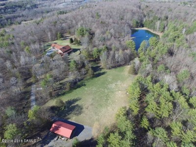 Queensbury, Fort Ann Single Family Home For Sale: 360 Clay Hill Rd