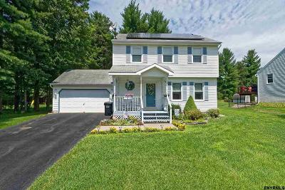 Queensbury, Fort Ann Single Family Home For Sale: 55 Peachtree La