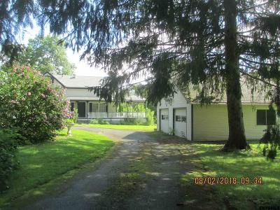 Columbia County Single Family Home For Sale: 503 Route 20