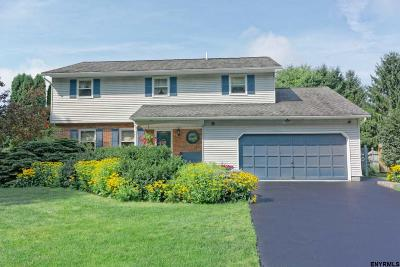 Albany County Single Family Home For Sale: 72 Longmeadow Dr