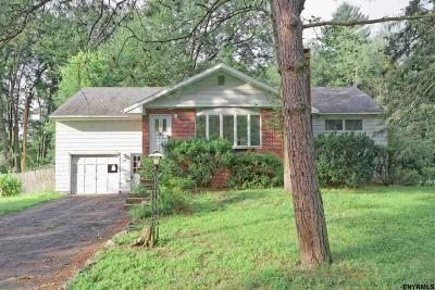 Guilderland Single Family Home For Sale: 101 Birchwood Dr