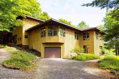 Berne Single Family Home For Sale: 1246 Switzkill Rd