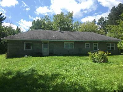 Guilderland Tov Single Family Home For Sale: 431 Settles Hill Rd