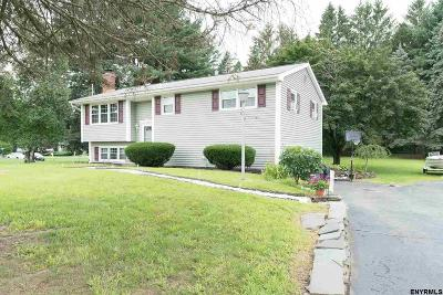 Albany, Amsterdam, Cohoes, Glens Falls, Gloversville, Hudson, Johnstown, Mechanicville, Rensselaer, Saratoga Springs, Schenectady, Troy, Watervliet Single Family Home New: 1 Ellyn La