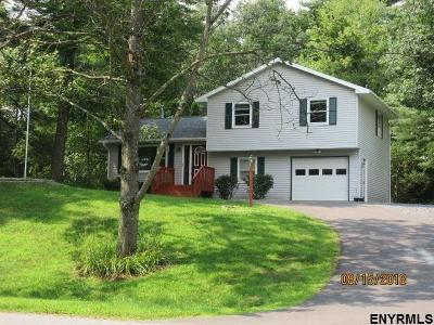 Albany County, Columbia County, Greene County, Fulton County, Montgomery County, Rensselaer County, Saratoga County, Schenectady County, Schoharie County, Warren County, Washington County Single Family Home New: 29 San Luis Rd