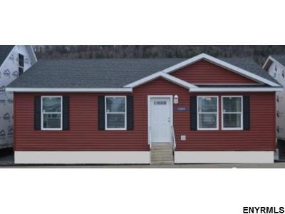 Albany County Single Family Home New: 469 New Salem Rd