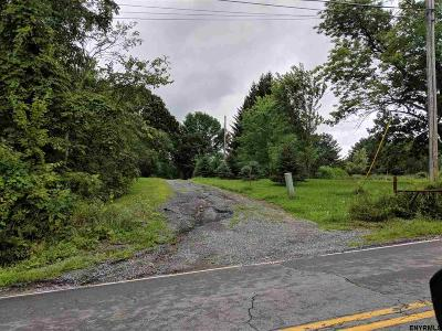 Albany County Single Family Home New: 7077 Dunnesville Rd