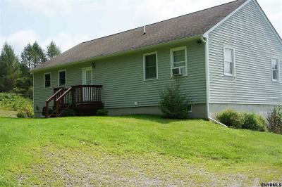 Canaan NY Single Family Home New: $299,000