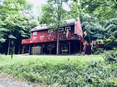Queensbury, Fort Ann Single Family Home For Sale: 40 Eagle Rock Rd