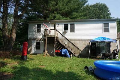 Esperance Single Family Home For Sale: 156 Memory La