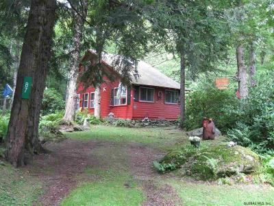 Rensselaer County Single Family Home For Sale: 87 Mountainview Ter