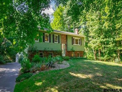 Clifton Park Single Family Home For Sale: 584 Englemore Rd