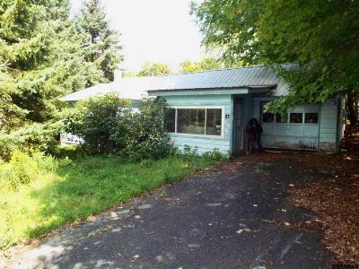 Edinburg NY Single Family Home For Sale: $49,000