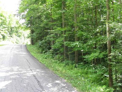 Johnstown Residential Lots & Land For Sale: Wemple Rd