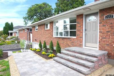 Albany Single Family Home For Sale: 177 Ridgefield St