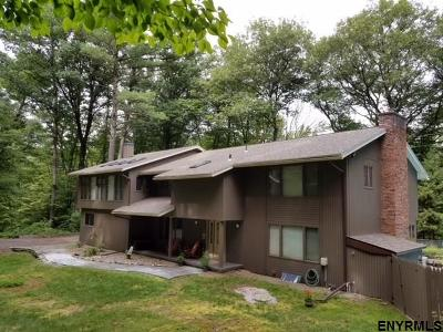 Guilderland Single Family Home For Sale: 48 Pinewood Rd